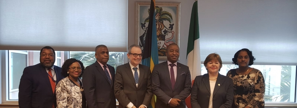 MInister meets with Ireland